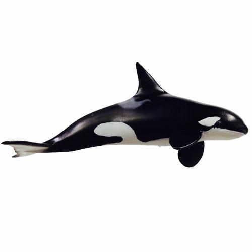 orca-02.jpg